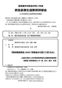 救急医療生涯教育研修会案内(R02.11.12)のサムネイル